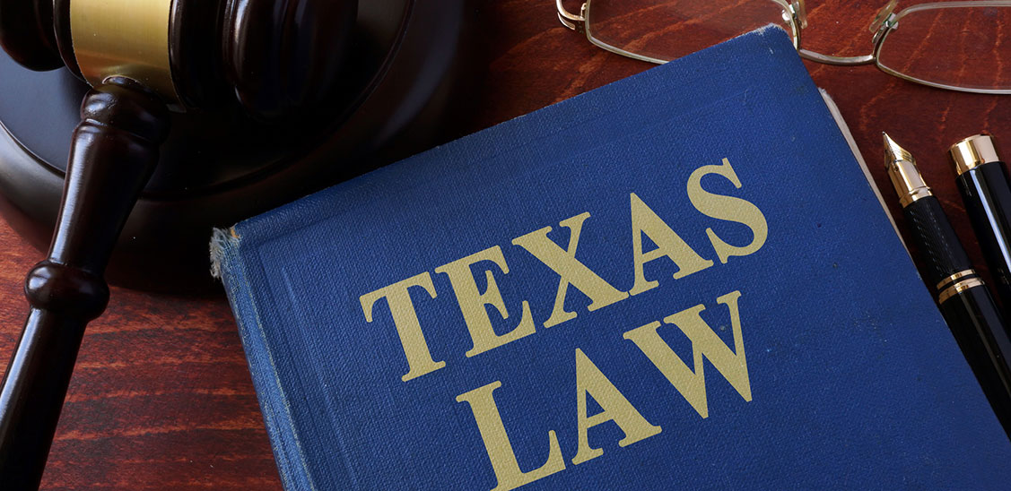 form a business in texas